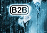 b2b biz guy feature