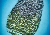Electronic Fingerprint