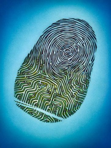 Electronic Fingerprint
