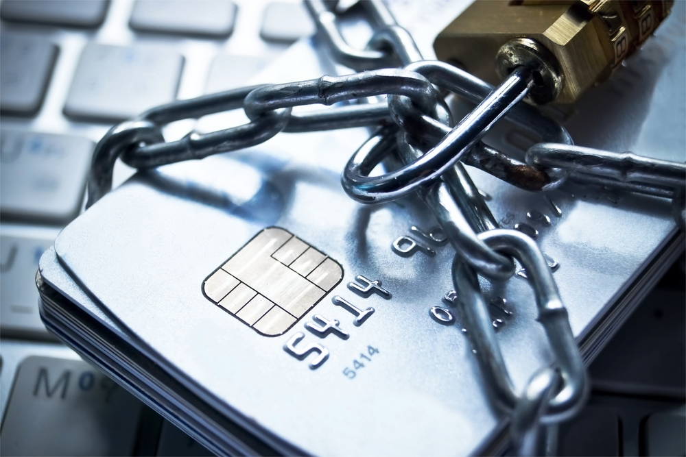 Chip Shield Reader Fights Online Fraud