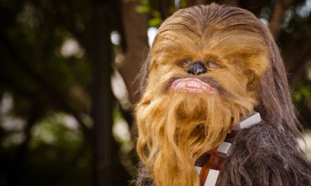 Kohl's Chewbacca Masks Sells
