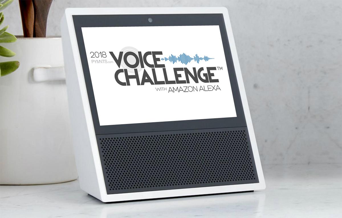 Beyond The Echo Alexa Voice Challenge Winners Wiring Money With Usaa