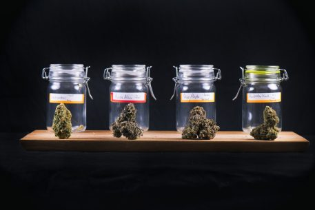 Leafbuyer Technologies Buys Greenlight Technologies To Expand Its Cannabis Markets