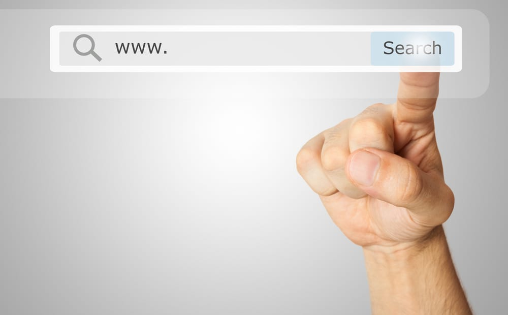 Google Adds Pro-Privacy Search Engines