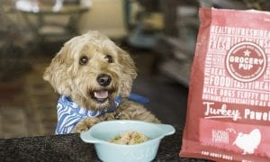 Grocery Pup dog food
