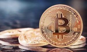 bitcoin-daily-fraud