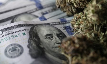 How Merchants Prepare For Cannabis Payments