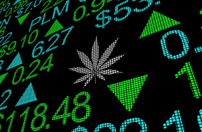 Cannabis Cos See Share Prices Nosedive