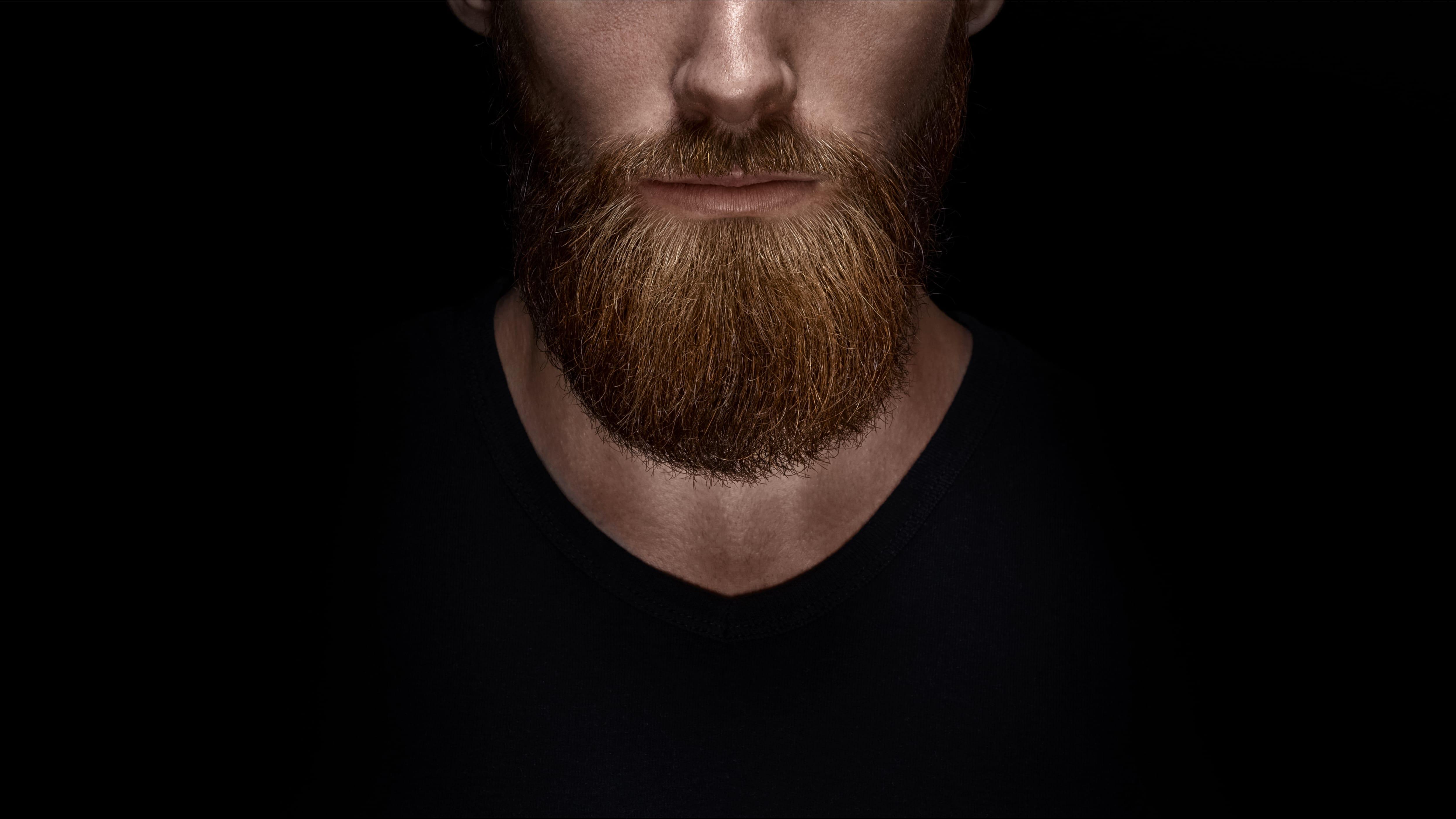 Astonishing Building The Beard Trend Into Ecommerce Portal Pymnts Com Schematic Wiring Diagrams Amerangerunnerswayorg