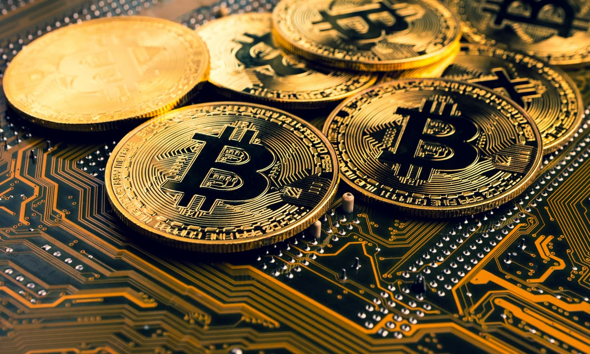 Hackear bitcoins 2021 stomping grounds betting odds